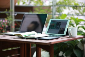 Free photo of Plant, Table, Computer, Computer Desk and Laptop