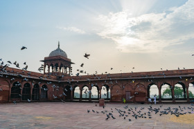Free photo of flock of pigeons flying in jama masjid in daylight