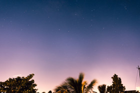 Free photo of Starry night amidst tropical palm trees
