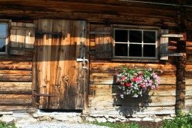 Free photo of Flower, Window, Plant, House and Building