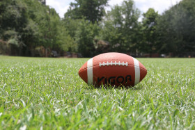 Free photo of Football, Plant, Sports Equipment, Grass and Golf equipment